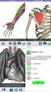 Visual Anatomy image 5 Thumbnail