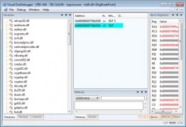 Visual DuxDebugger immagine 1 Thumbnail