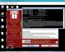 WanaKiwi imagem 3 Thumbnail