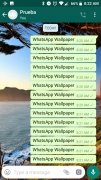 WhatsApp Wallpaper image 7 Thumbnail