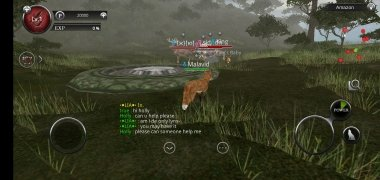 Wild Animals Online - WAO imagen 11 Thumbnail