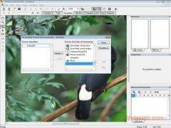 WinMorph image 2 Thumbnail