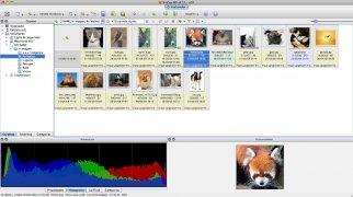 XnView imagen 2 Thumbnail