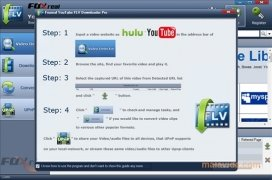 YouTube FLV Downloader image 2 Thumbnail