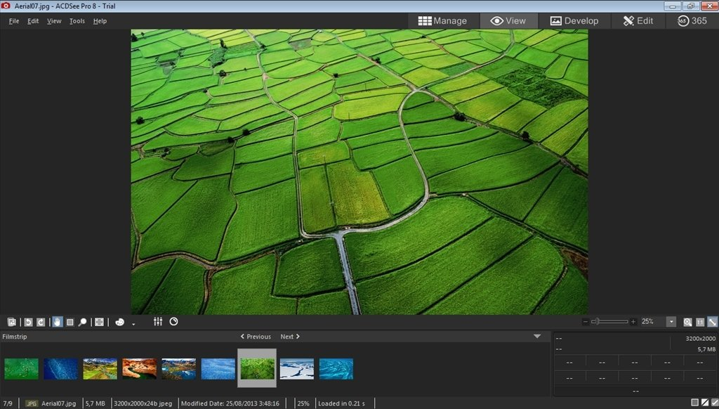 acdsee photo manager pro 8.1.99