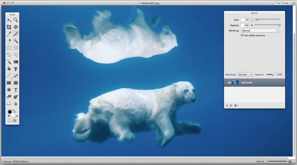 Acorn Mac image 5