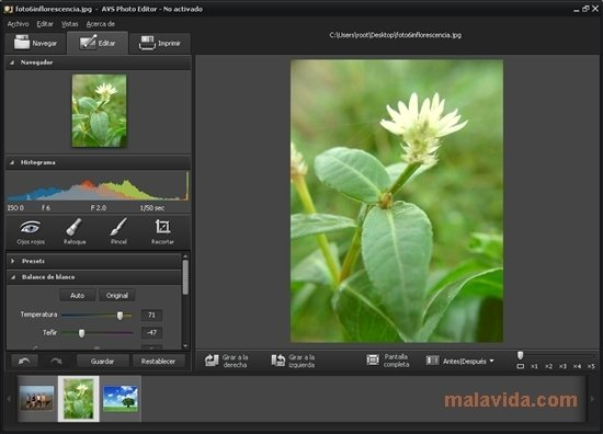 AVS Photo Editor 3.2.1.165 - Download for PC Free