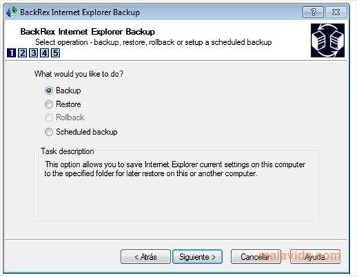 BackRex Internet Explorer Backup image 4