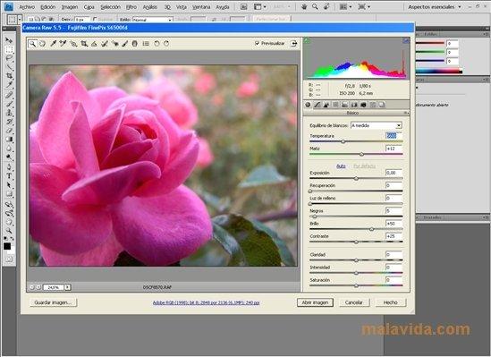 Camera Raw image 4