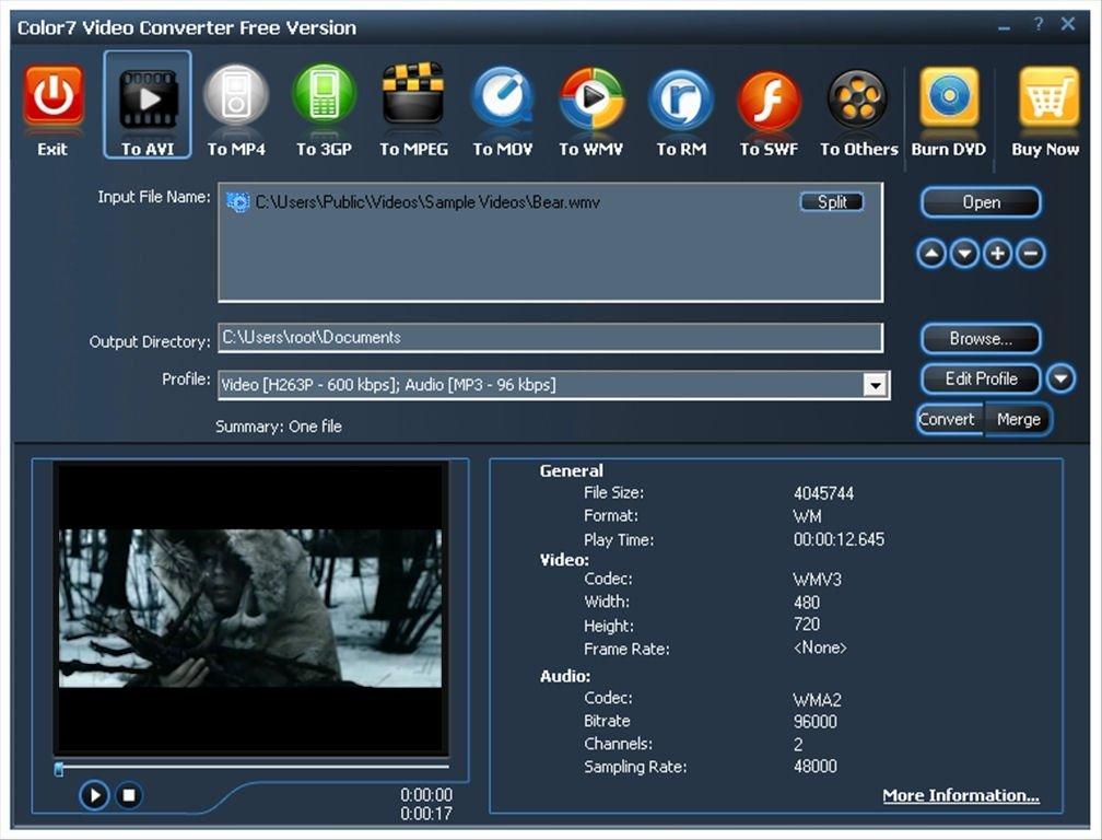 Color7 Video Converter image 6