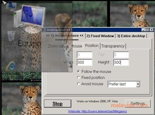 DesktopZoom image 4
