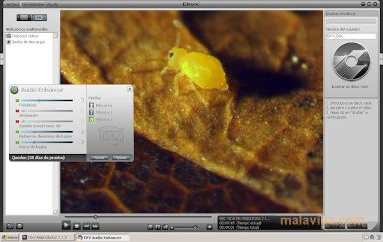 DivX Player image 4