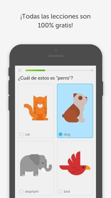 duolingo iphone