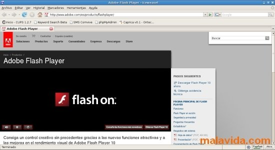 Flash Player Linux image 3