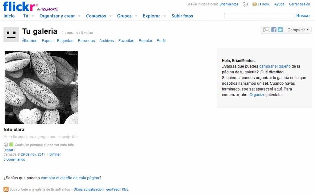 Flickr Webapps image 6