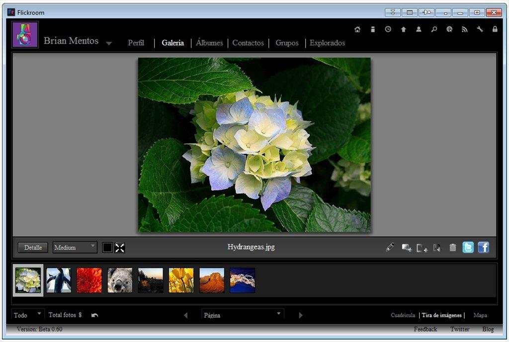 Flickroom image 7