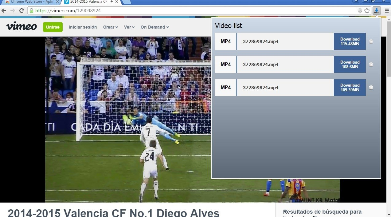 FVD Video Downloader 1 55 - Download for PC Free