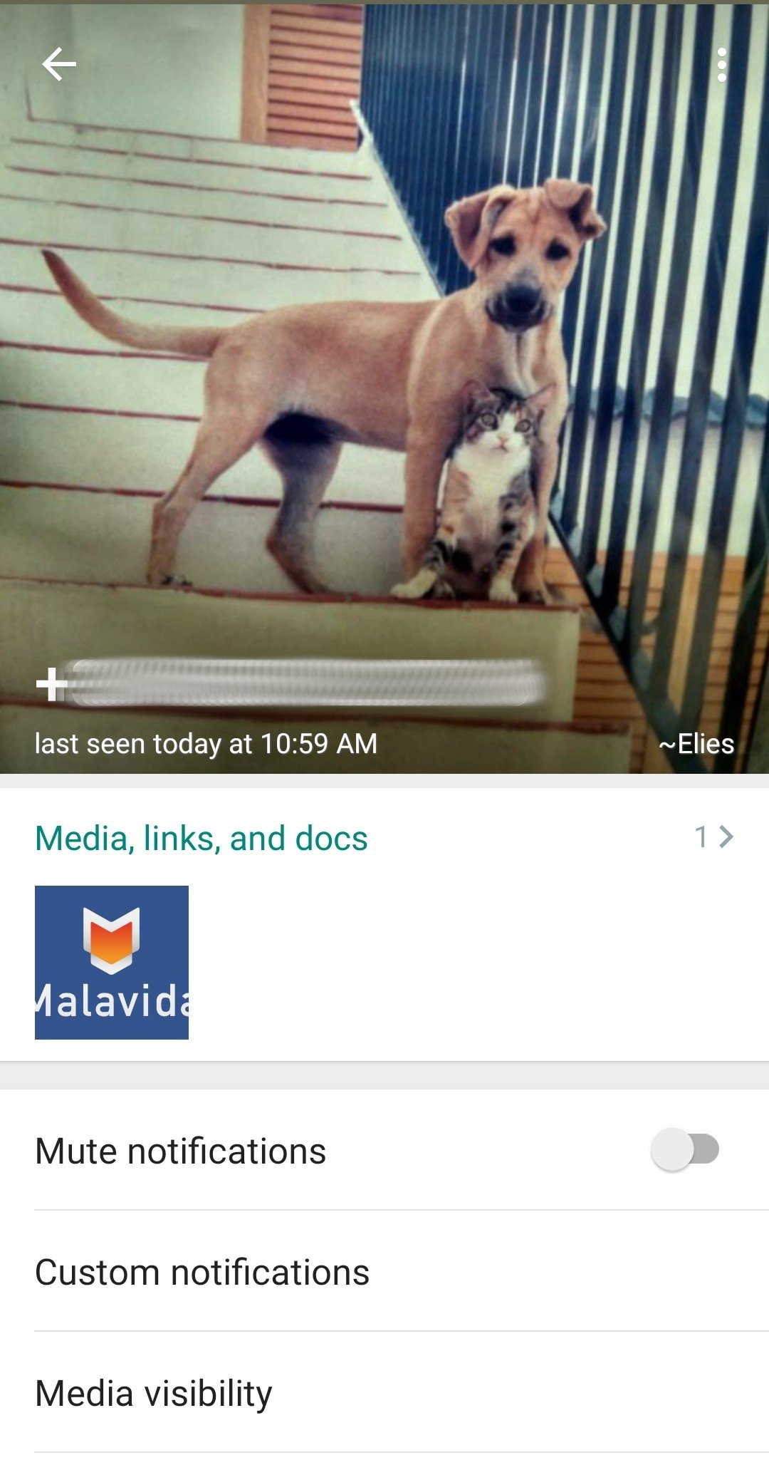 HeyWhatsApp 9.20 - Download for Android APK Free