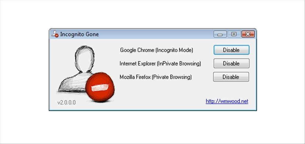 Incognito Gone image 4