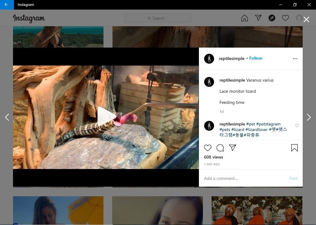 download instagram para pc gratis