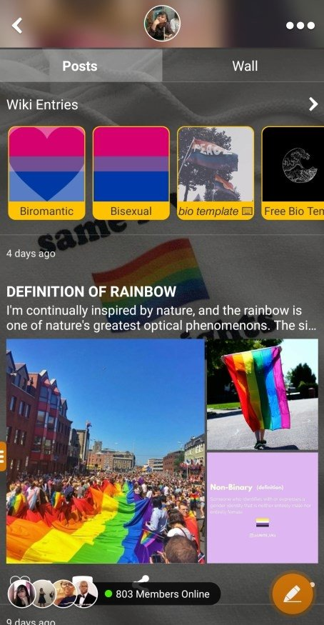 LGBT Amino 2 3 28023 - Download for Android APK Free