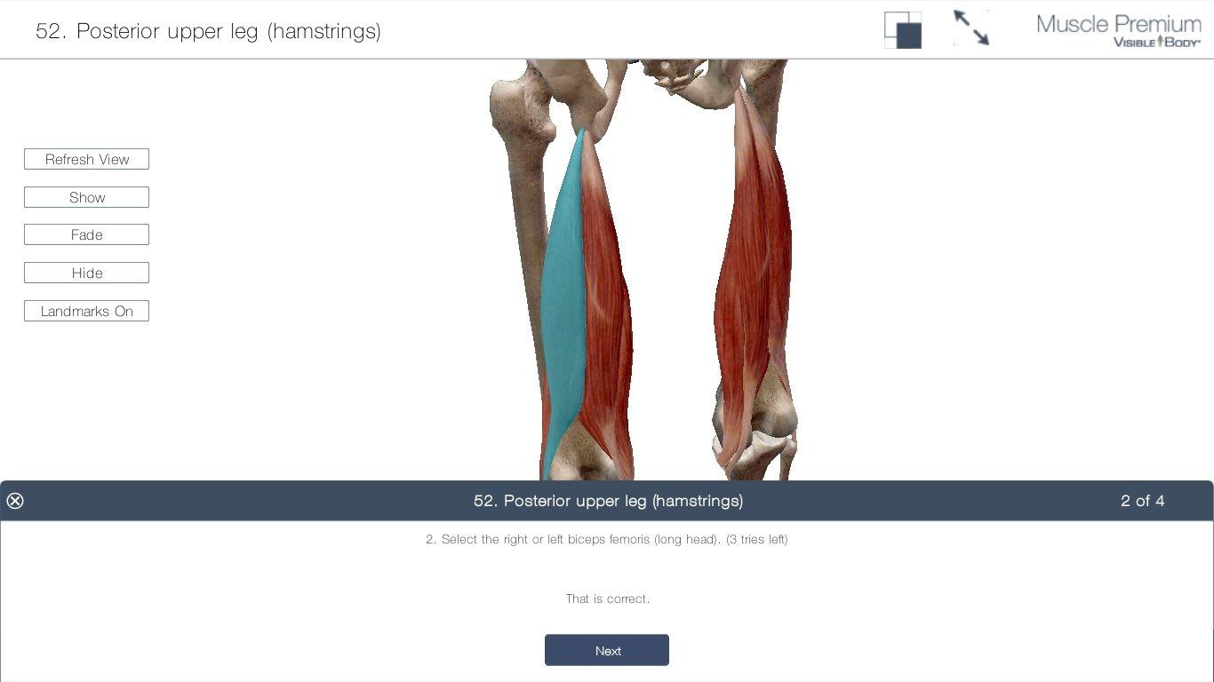 Ziemlich Visible Body 3d Human Anatomy Atlas 2 Fotos - Anatomie Von ...