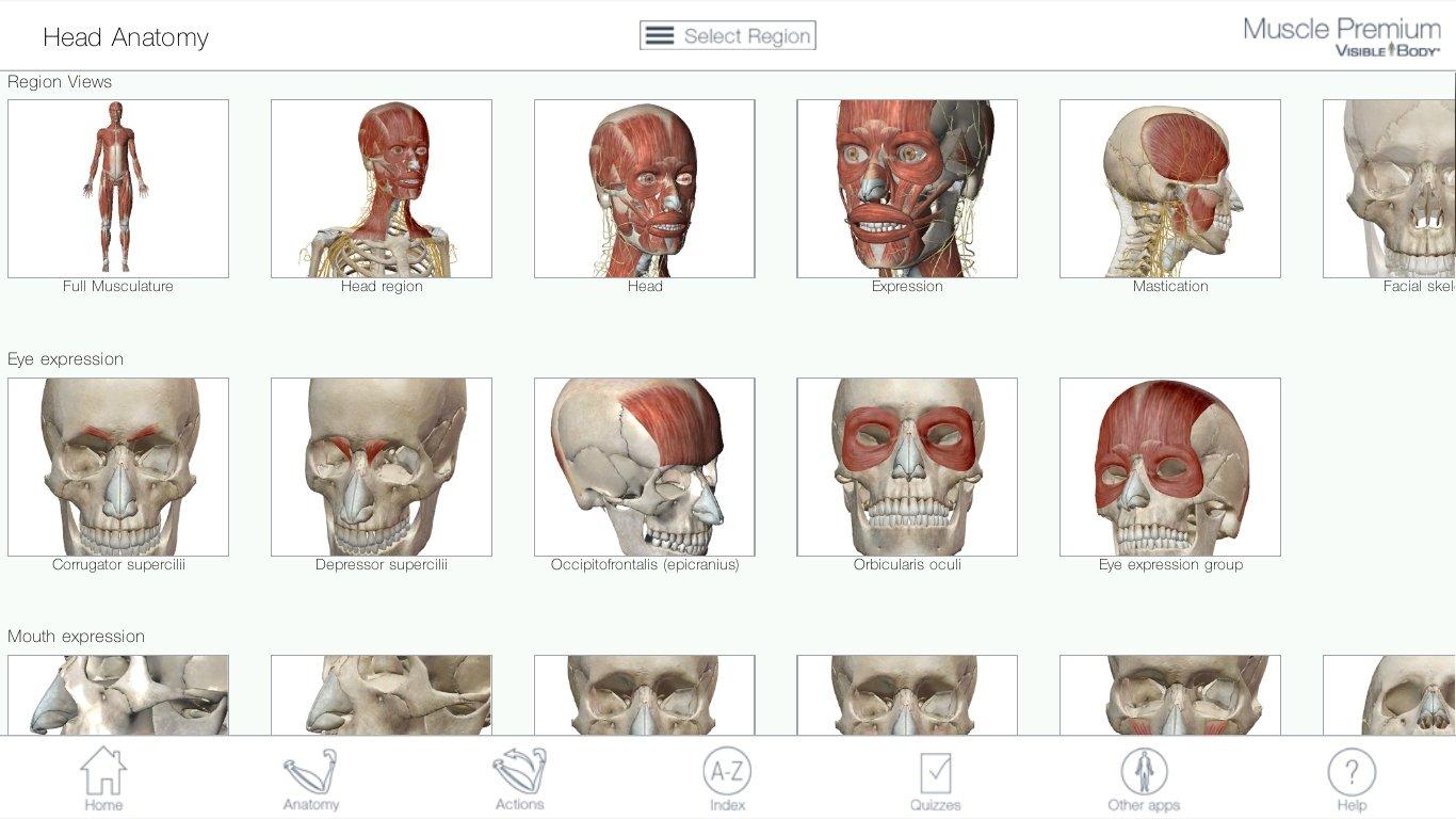 Ziemlich Kostenlos Anatomie Software Ideen - Anatomie Ideen ...