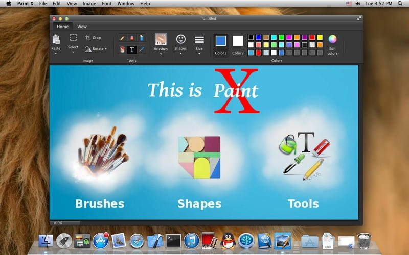 Paint X Mac image 5