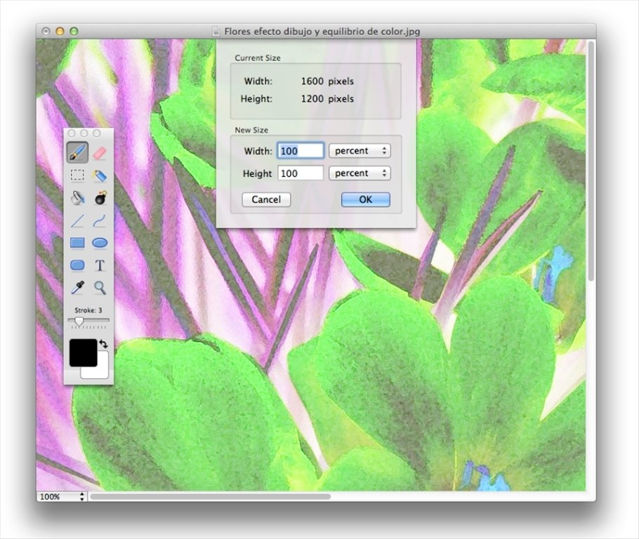 PAINTBRUSH MAC TÉLÉCHARGER