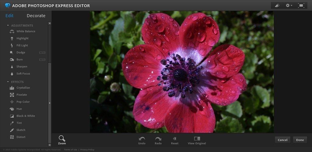 Photoshop Express Webapps image 6