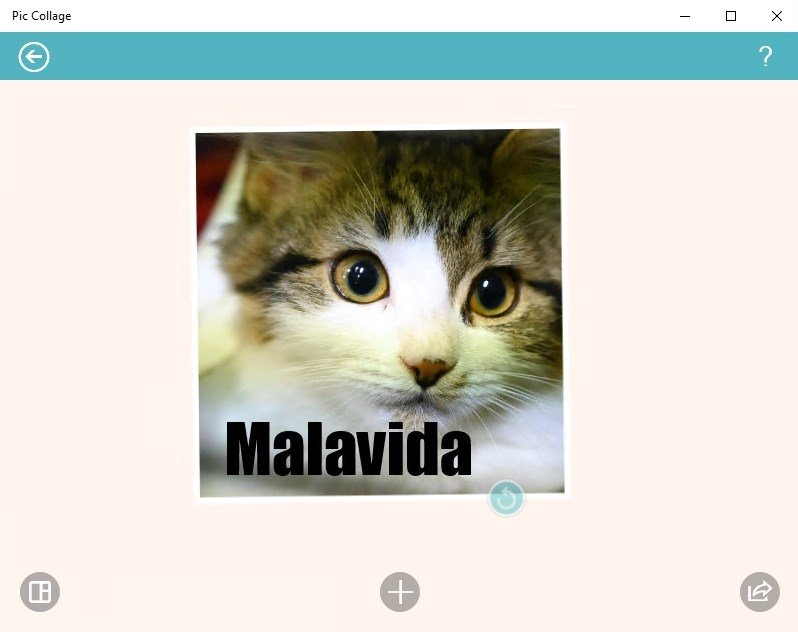 Download pic collage gratis in italiano for Collage foto online gratis italiano
