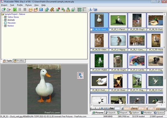 PicaLoader image 4