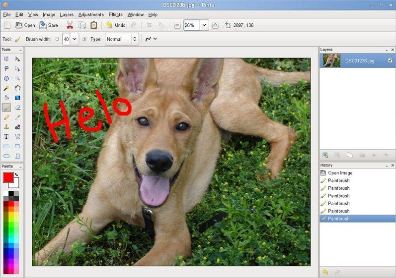 Pinta Linux image 3