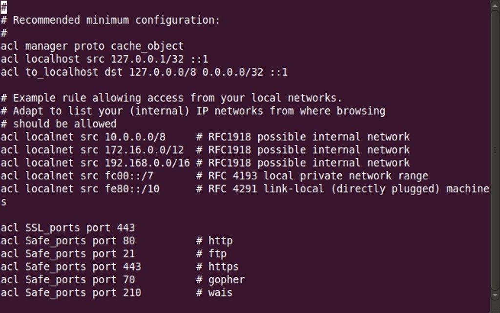 Squid Linux image 4