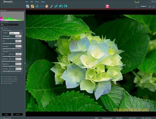 STOIK Imagic image 5