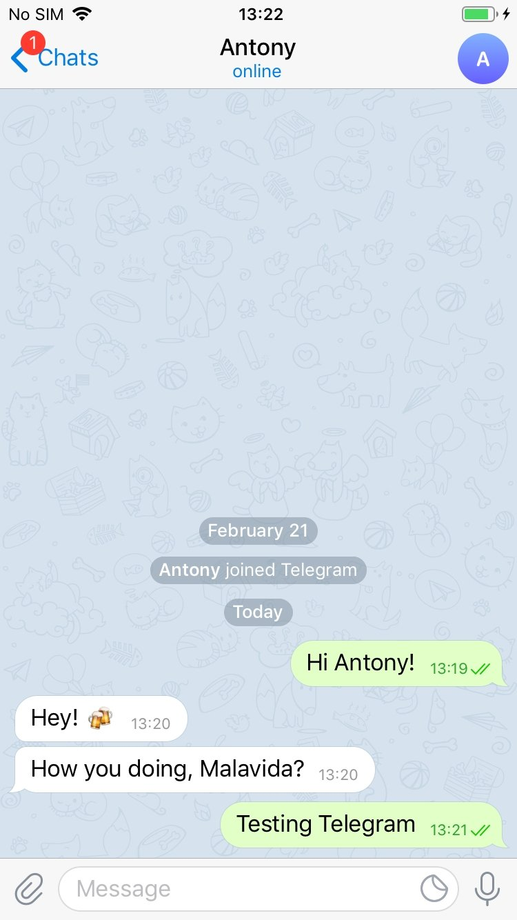 Telegram Messenger iPhone image 4