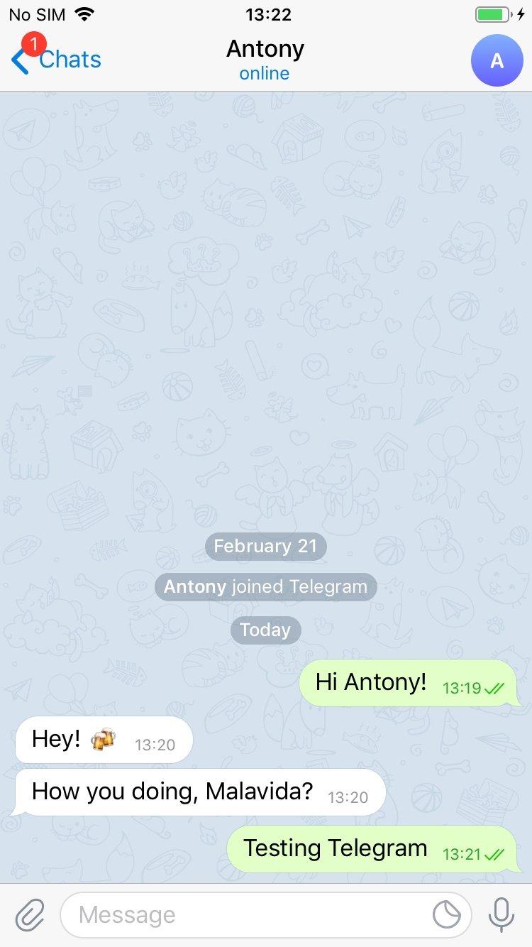 Telegram Messenger iPhone image 5