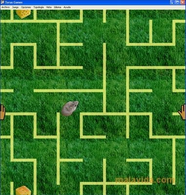 Torus Games image 4