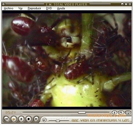 Total Video Player image 3