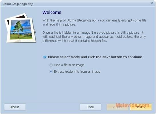 Ultima Steganography image 7