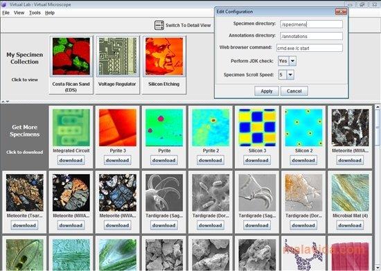 Virtual Microscope image 4