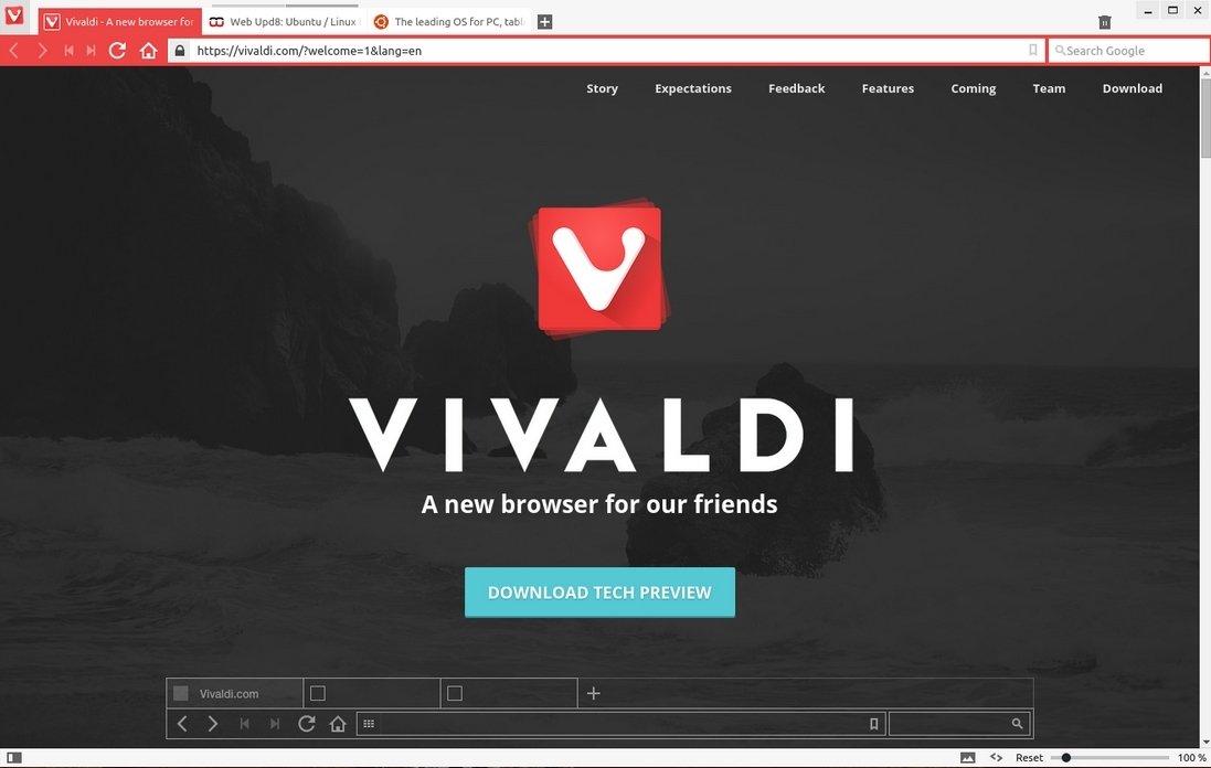 Vivaldi Linux image 3