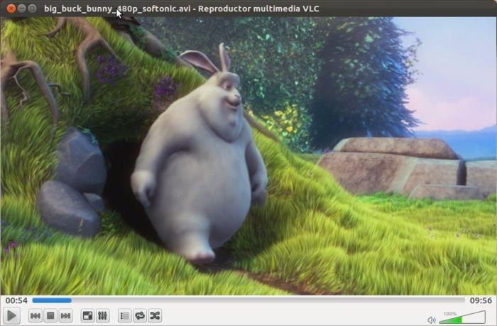 VLC Linux image 2