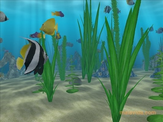 Water Life 3D Screensaver image 4