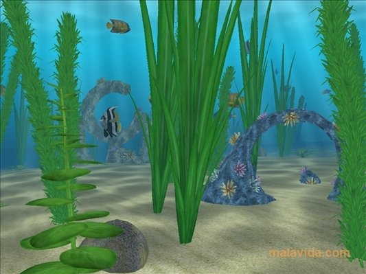 Water Life 3D Screensaver