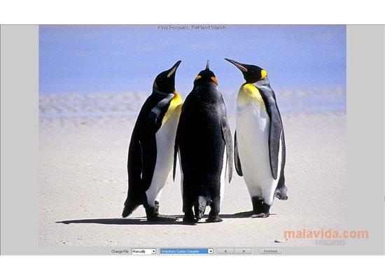 Webshots desktop download.
