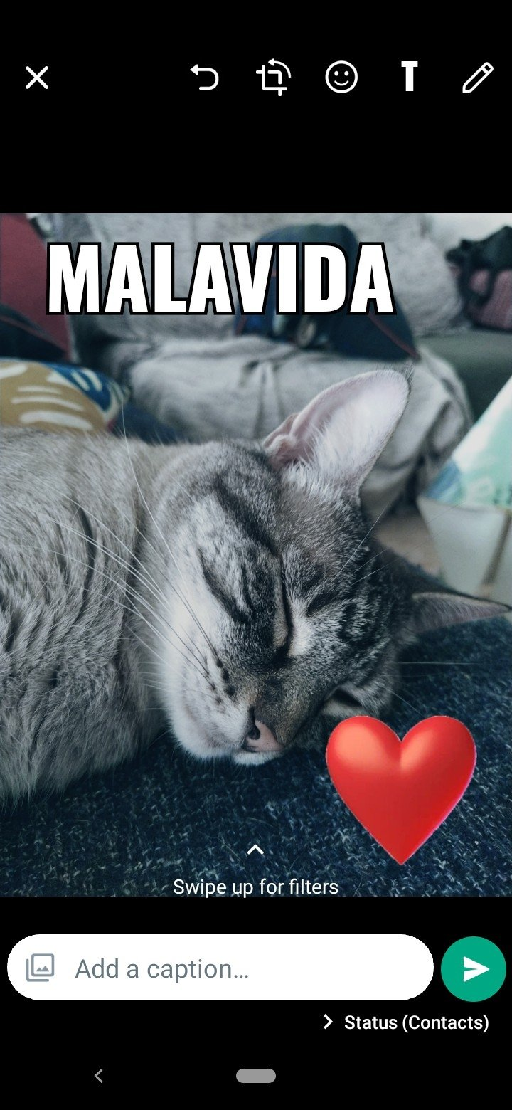 whatsapp gb 6.75
