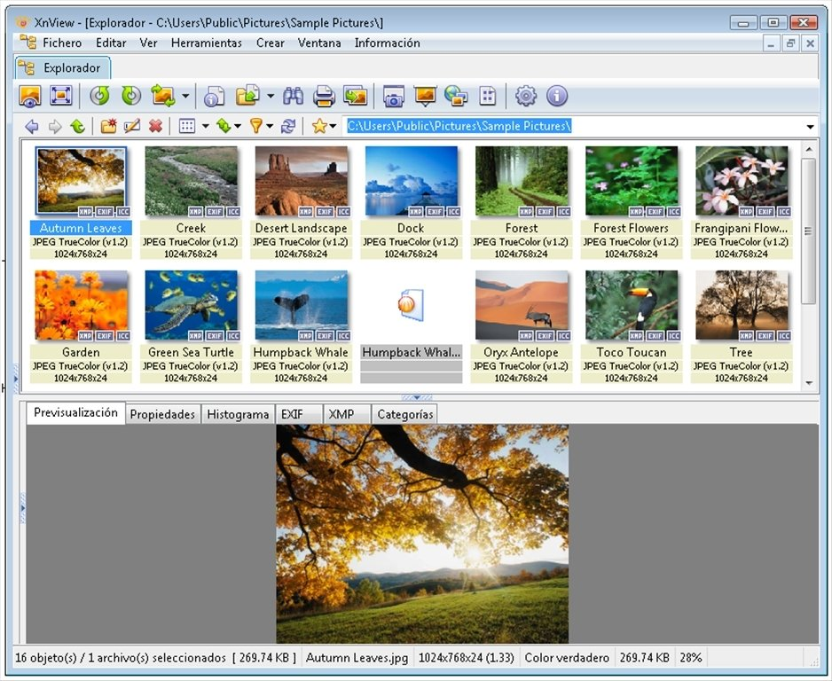 XnView 2.46 - Descargar para PC Gratis