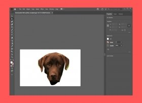 Cómo recortar una imagen con Adobe Illustrator