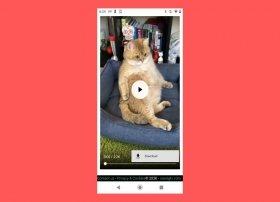 Comment télécharger des vidéos d'IGTV sur Android